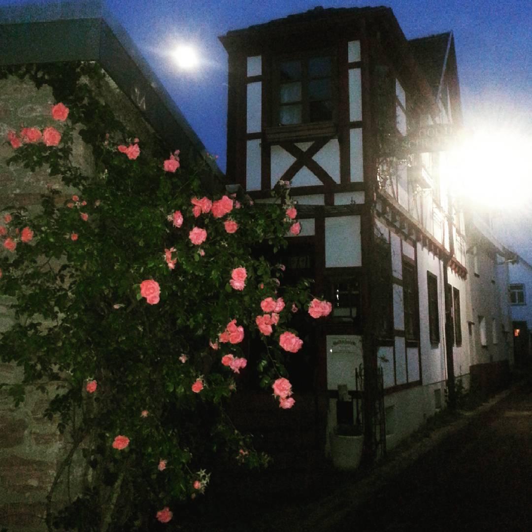 Rosen, Mond und das Fachwerk der Goldschmiede in Seligenstadt