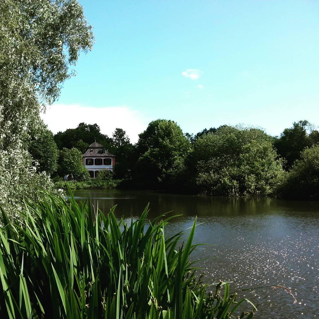 Grüne Landschaft, ein See und die Wasserburg