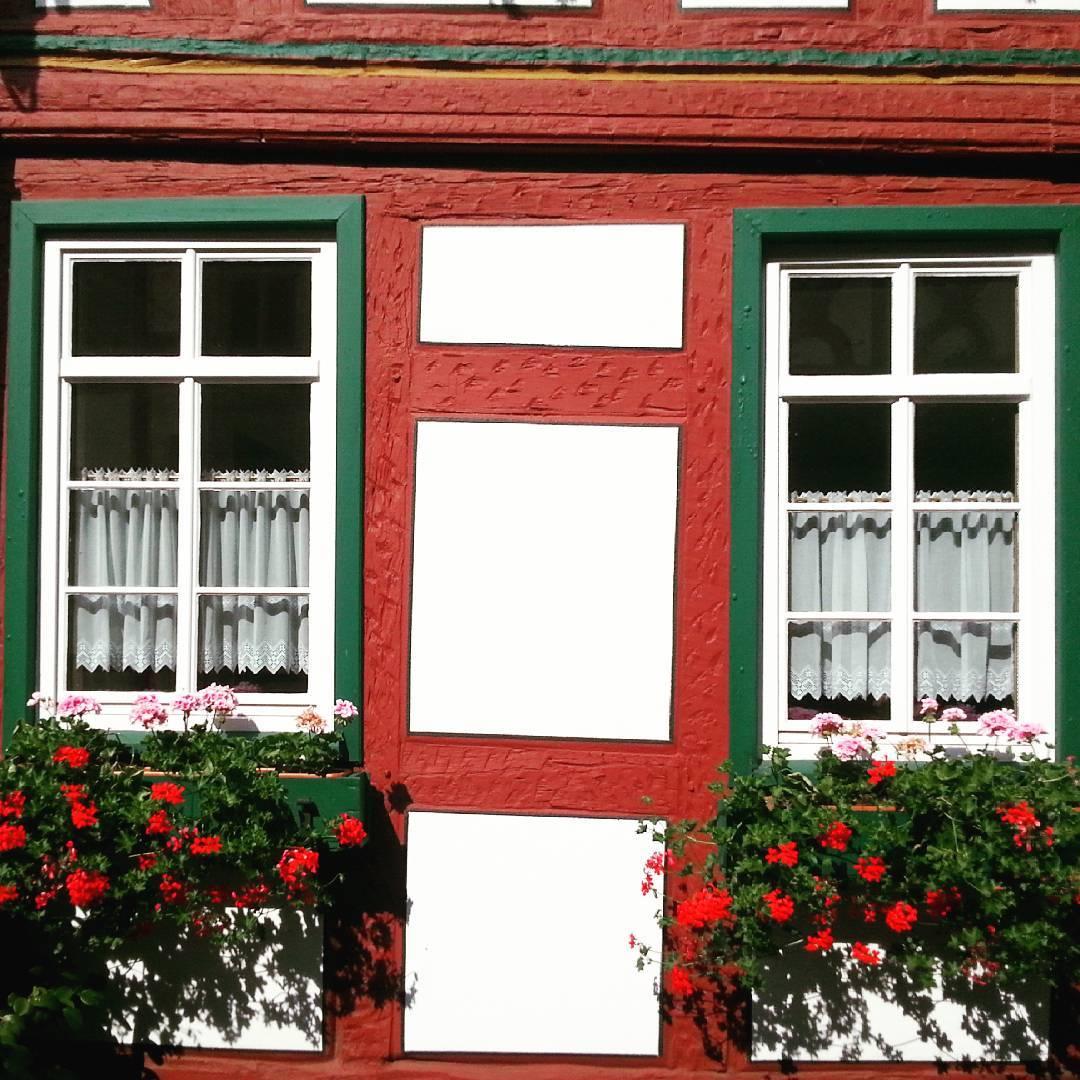 Zwei Fenster,  zwei Blumenkästen,  zwei Gardinen, ein Fachwerkhaus