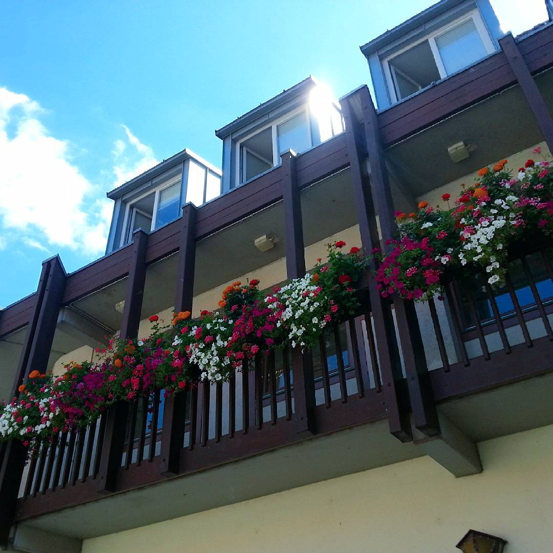 Blumen und Balkon auf der Rückseite des Rathauses