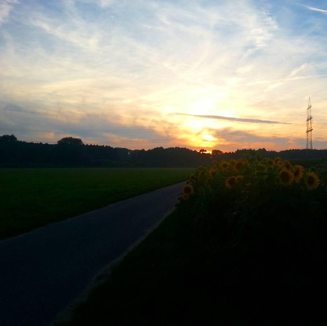 Mit diesem Sonnenuntergang wünschen wir euch eine gute Nacht