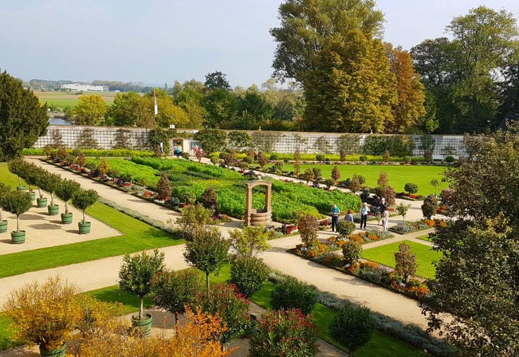 Ein etwas anderer Blickwinkel auf unseren schönen Konventgarten