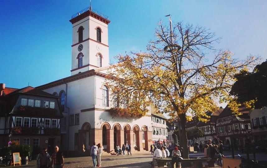 Ein sonniger Herbsttag auf dem Marktplatz lockt nicht nur Touristen in die Altstadt. Wir wünschen euch ein schönes Wochenende