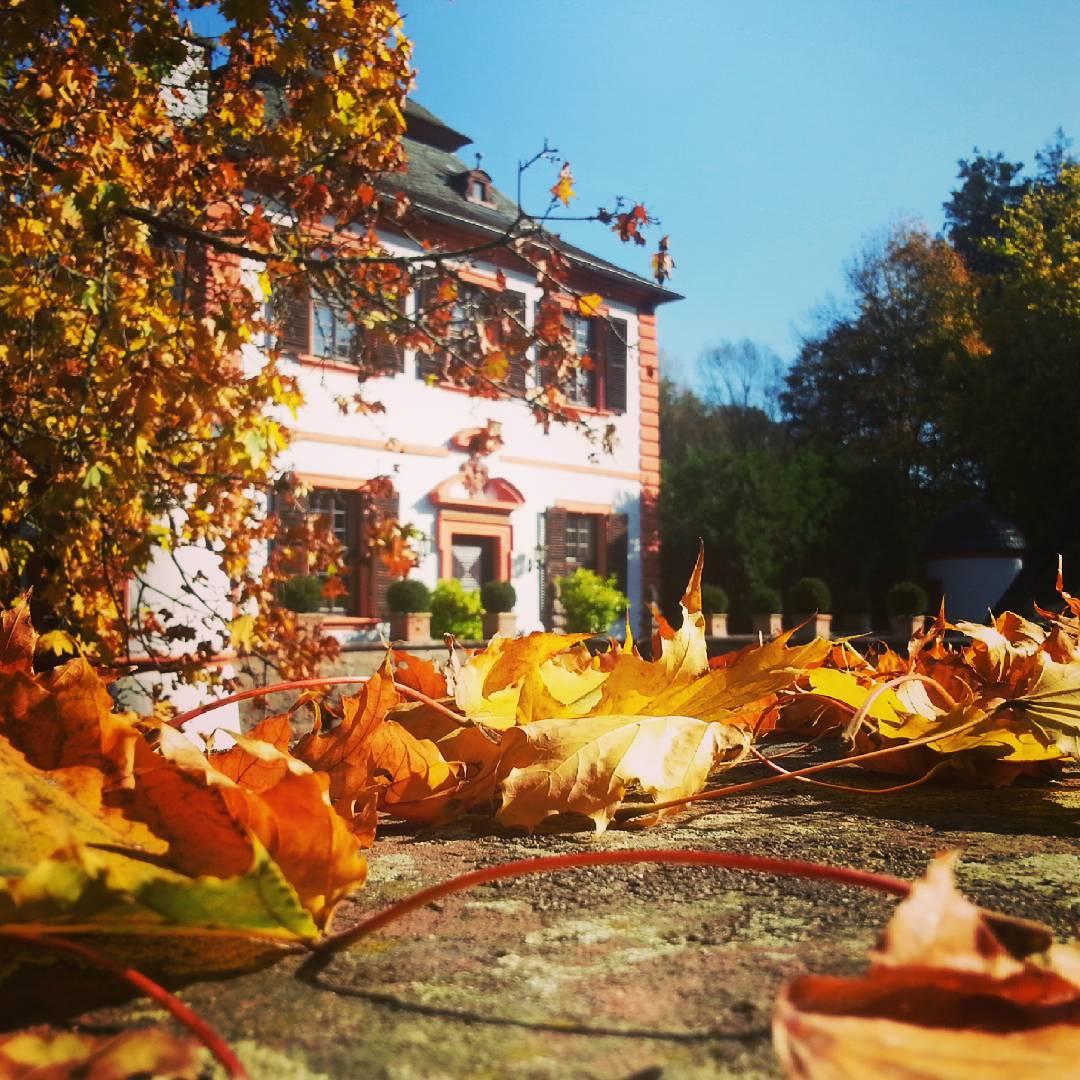 Diese wunderschönen Oktobertage lassen es nicht anders zu, deshalb gibt es heute noch ein Herbstbild. Dieses mal von der Wasserburg
