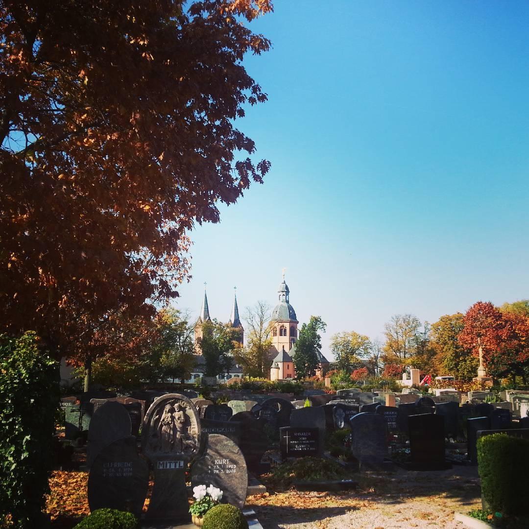 Herbst auf dem Friedhof in Seligenstadt, im Hintergrund die Basilika. An so einem grauen Novembertag, denke ich gerne an sonnigere Tage im Oktober zurück