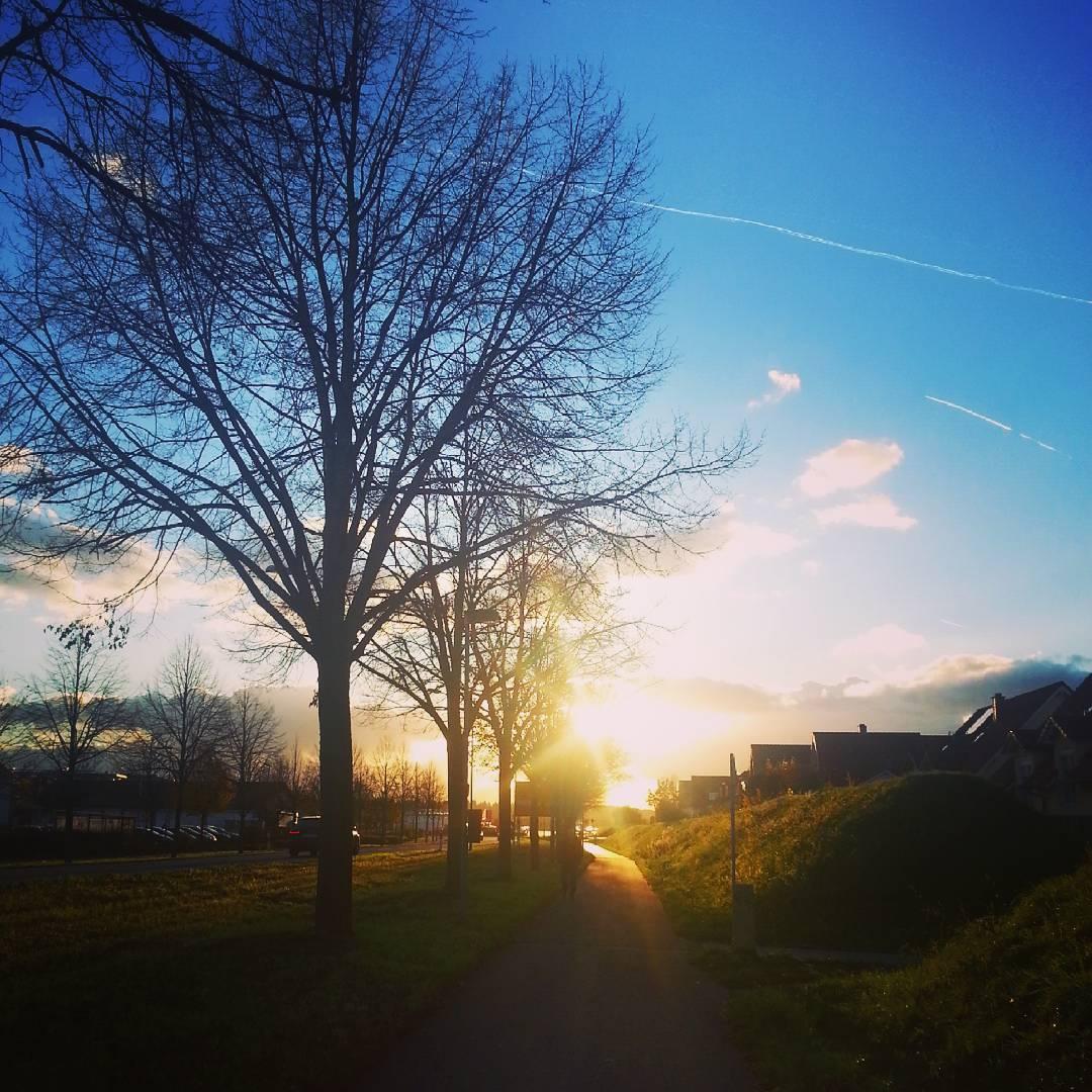 Sonnenuntergang in der Dudenhöfer Straße