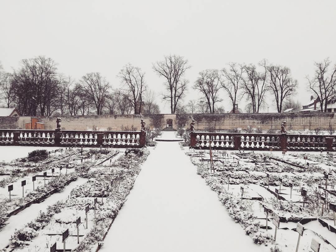 Ein Eindruck aus dem verschneiten Klostergarten vom vergangenen Sonntag