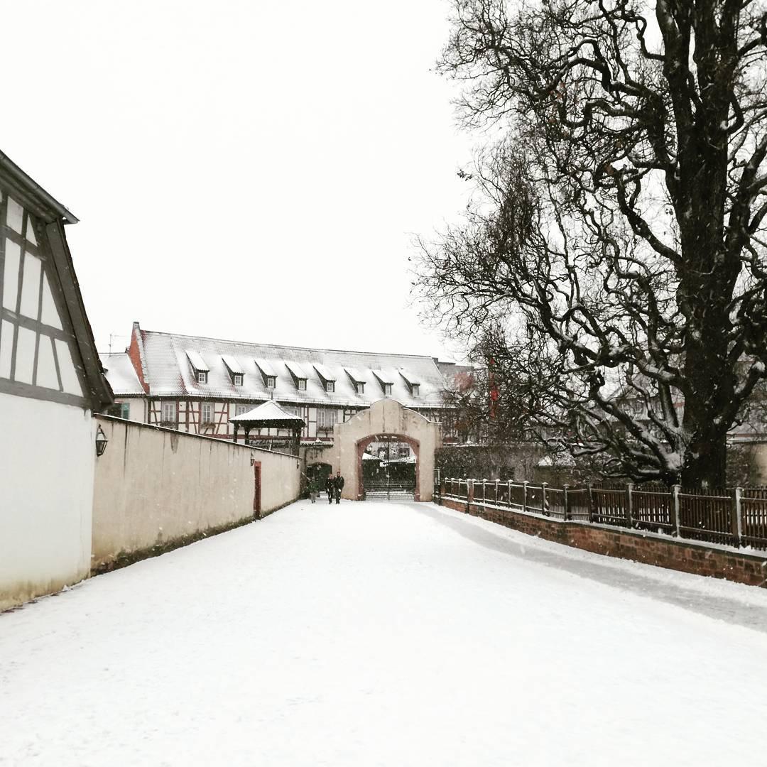 An einem der wenigen Tage im Dezember, an denen es in Seligenstadt geschneit hat, ist dieses Foto entstanden