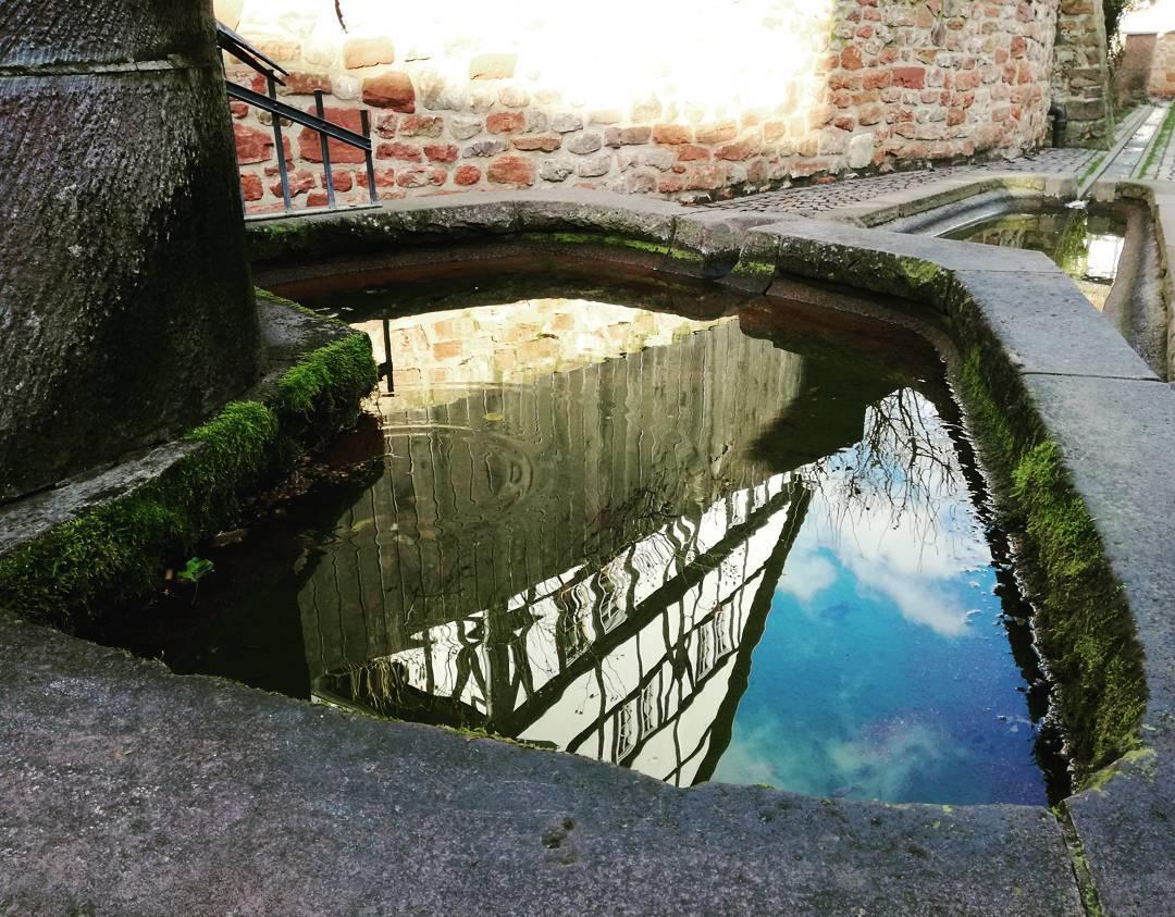 Spiegelung im Roten Brunnen