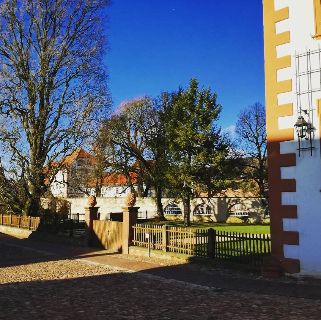 Wenn Winter und Sonnenschein im Klostergarten aufeinander treffen