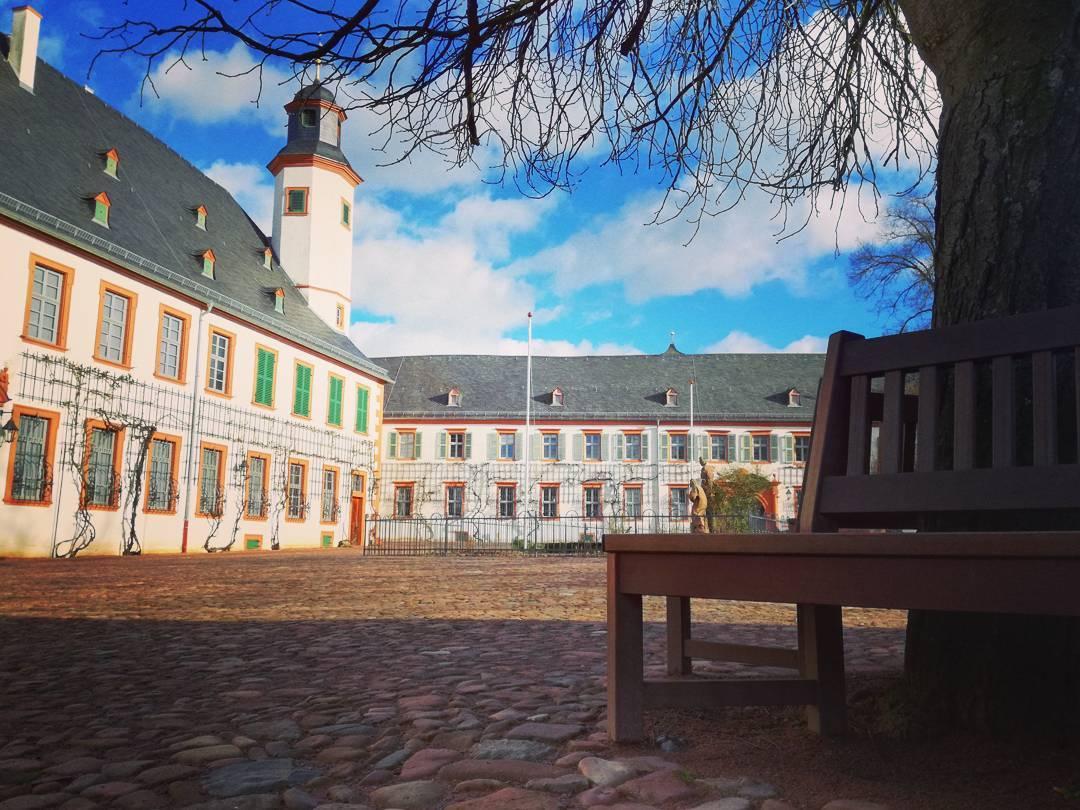 An einem sonnigen Tag im Kloster Seligenstadt… Ich freue mich schon auf den Frühling, wenn im Klostergarten die Blumen wieder blühen