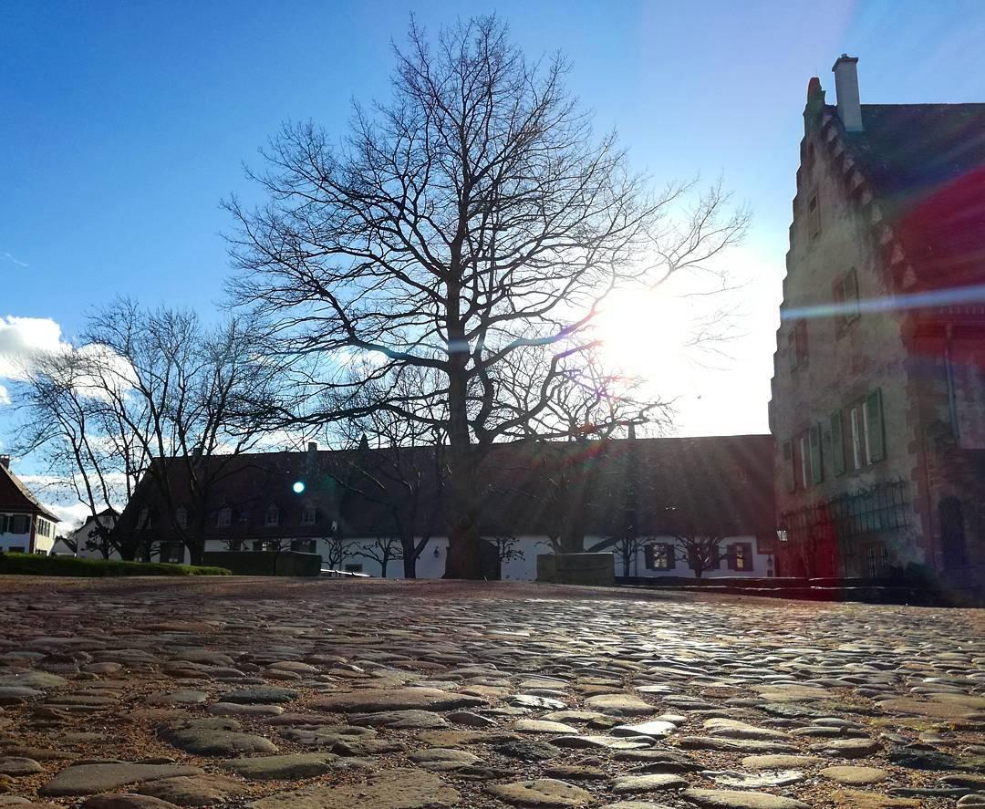 Im Klostergarten… bald wird es Frühling
