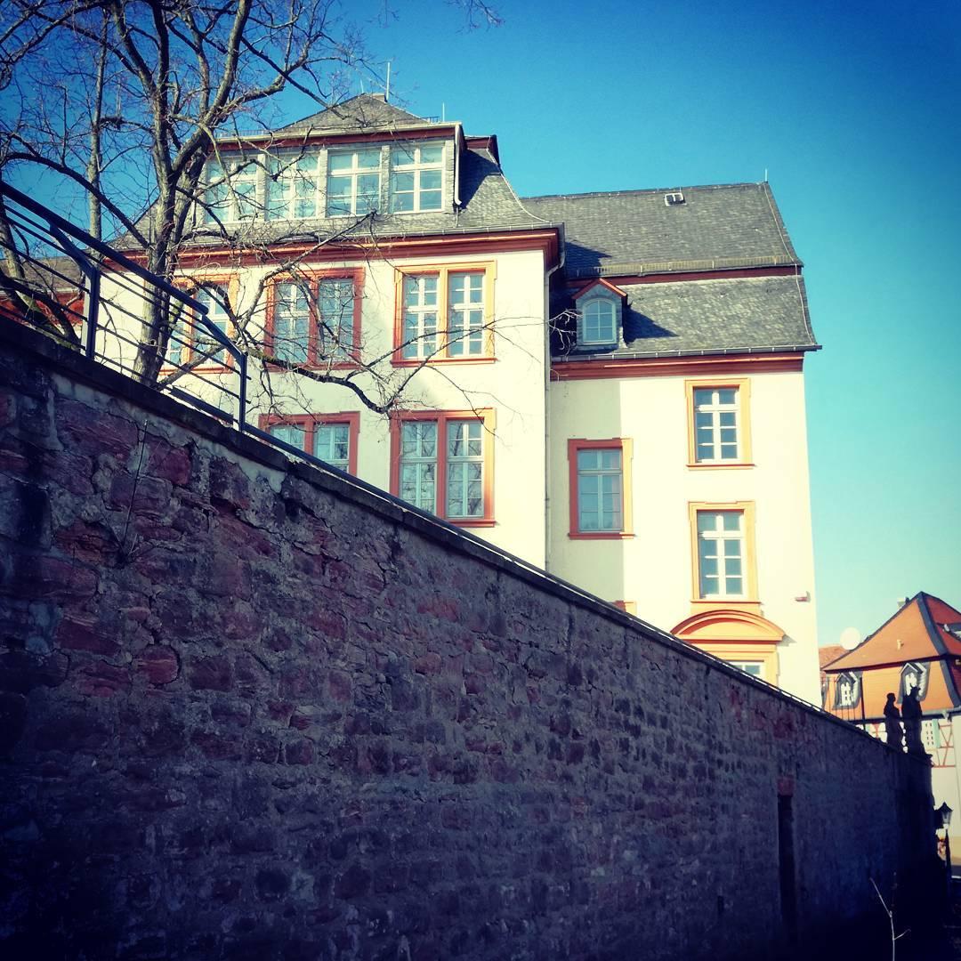 Hans-Memling-Schule vom Mainuferweg aus betrachtet