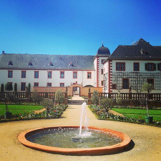 Der Brunnen im Klostergarten wird von vielen als Wunschbrunnen genutzt. Seit ich denken kann, liegen immer Münzen auf seinem Grund. Ich frage mich, was mit dem Geld geschieht… @schloesserundgaertenhessen