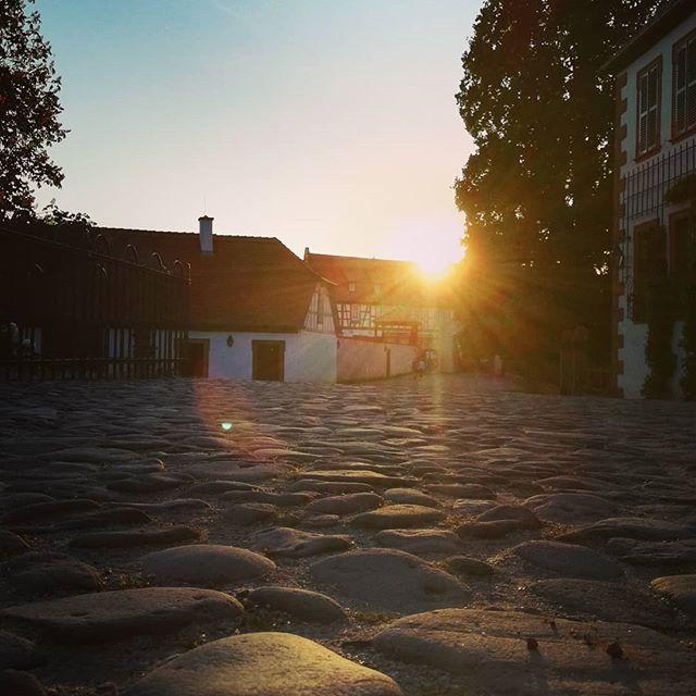 Gegenlicht und Kopfsteinpflaster im historischen Klostergarten