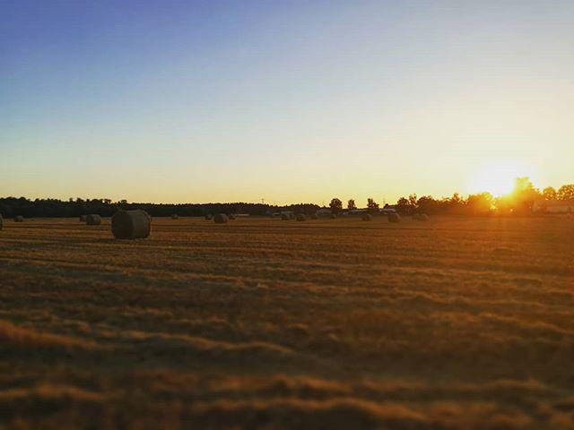 Auch das ist Seligenstadt: Strohballen im Sonnenuntergang